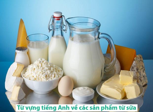 Từ vựng tiếng Anh về các sản phẩm từ sữa