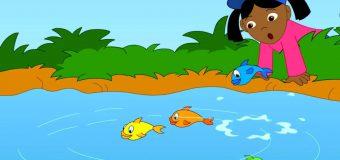 """Cho bé học tiếng Anh qua bài hát """"1,2,3,4,5 Once I Caught A Fish Alive"""""""